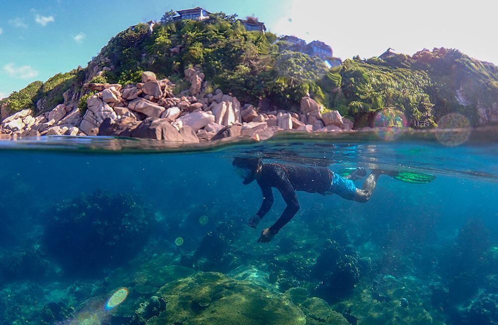 ทัวร์เกาะเต่า นางยวน ทะเลชุมพร